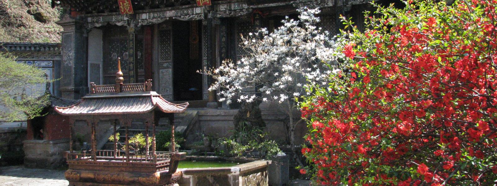 Stage monastère taoiste